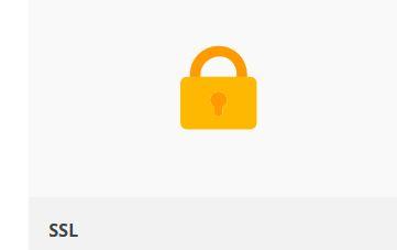 SSL-Zertifikat aber kein grünes Schloss